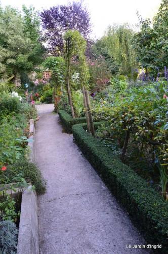 jardin,petit jardin,nénuphard,papillons 057-001.JPG
