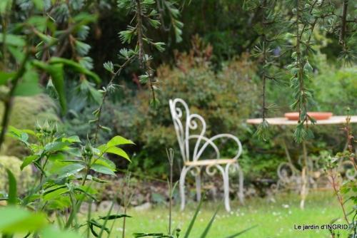 roses,jardin,Le Fleix,bleu 082.JPG