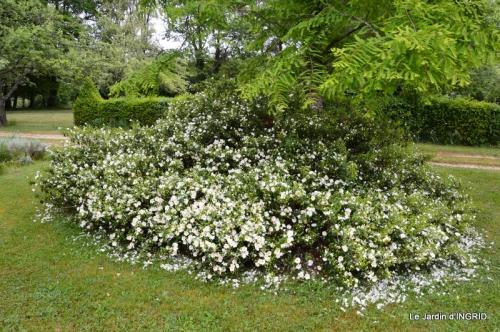 maison,jardin Bernadette,et jardin Claudine 036.JPG