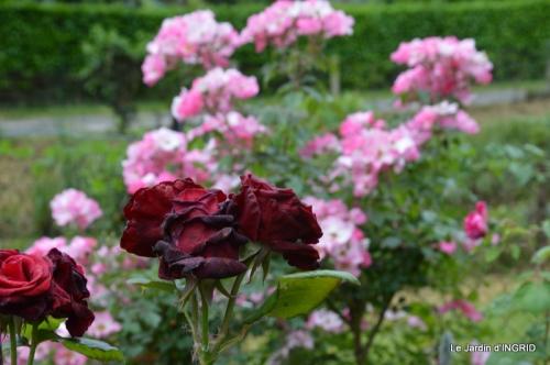 roses,marguerites,MOI,fêtes des mères avec les enfants 079.JPG