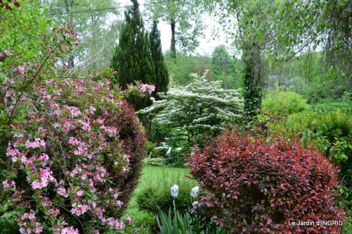 jardin avril 056.JPG