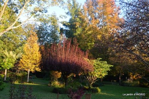 Issigeac,citrouilles ,rhus,automne,jardin 101.JPG