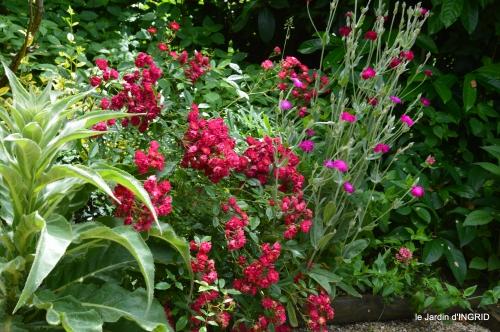 jardin,portes ouvertes,Julie 086.JPG