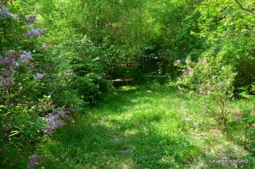 Fouleix,cygnes,Inès,jardin 062.JPG