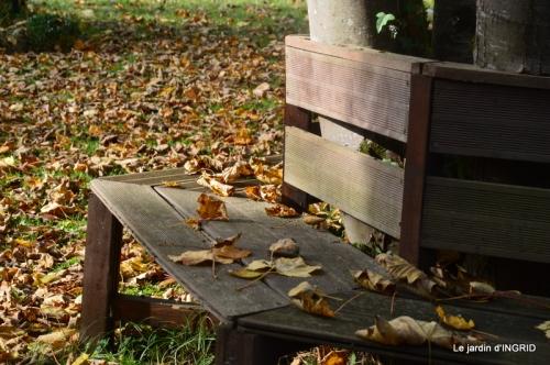 canal,automne,tonte des feuilles 015.JPG