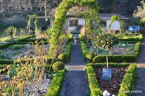 magnolia,taille,jardin,héllébores 047.JPG