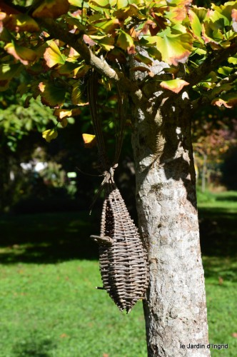 jardin octobre,chez Marylaur,Arnaud ,Ariane,la mer,sauges 202.JPG
