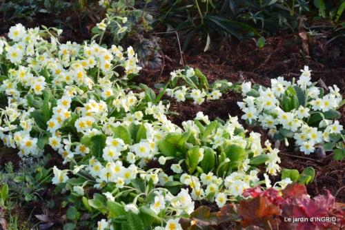 osier,bouquet,cabane,jardin 028.JPG