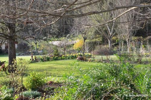 primevères ,jardin 015.JPG