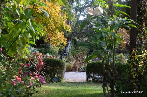 canal automne ,jardin,Ines 001.JPG