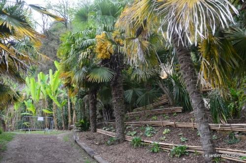 la Roque Gageac,Ines,jardin 023.JPG