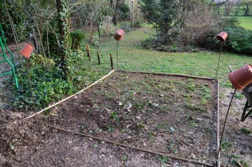 orchidée,puces à Creysse,jardin 057.JPG