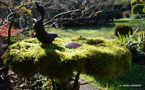 oiseaux,travaux,arbustes,les dernières fleurs 073.JPG