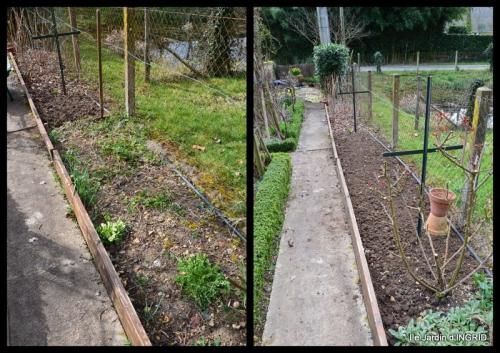 2015-03-19 semis,taille,tonte,tour du jardin1.jpg