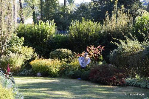 jardin,asters,fleurs blanches,chatte,rosiers roses 032.JPG