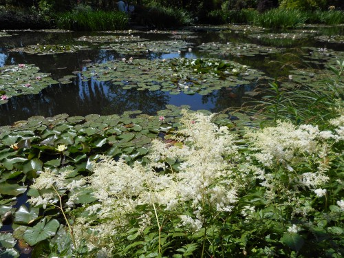 Normandie,jardin Monet,baie de Somme,chez Marylaur 217.JPG