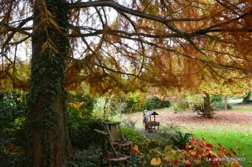 les arbres en automne,cabane 033.JPG