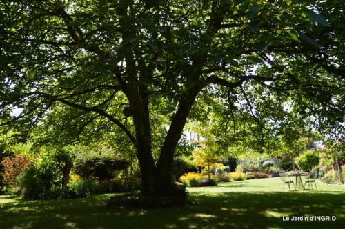 panier,composition,St Astier,jardin,lavande 094.JPG