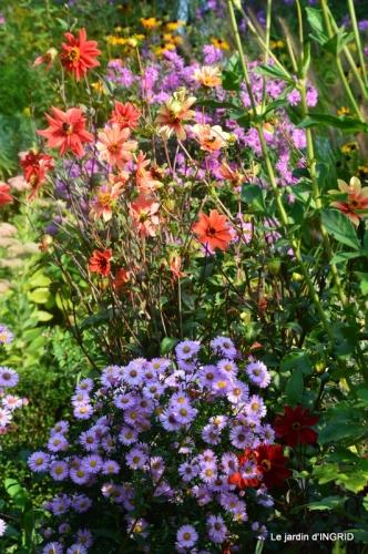 male ancienne,septembre jardin,couronne,bouquet 054.JPG