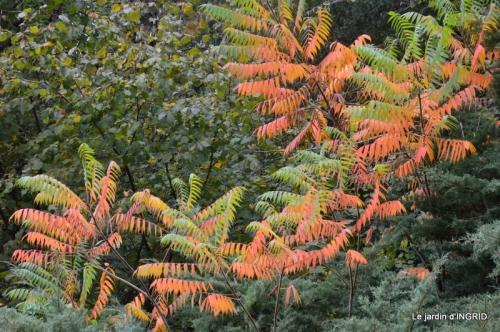 canal automne ,jardin,Ines 080.JPG