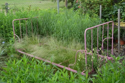 tour du jardin en juin 014.JPG