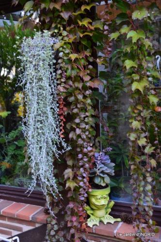 jardin Mme Perichou,grandes fleurs,bouquet,jardin 045.JPG