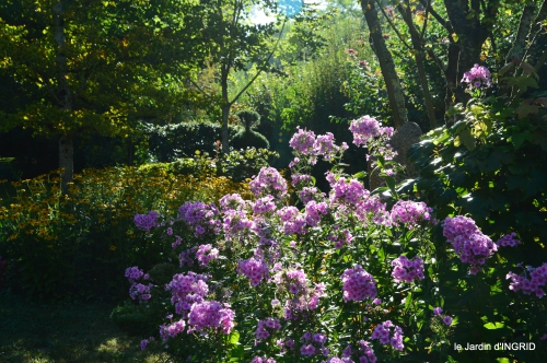 jardin,arrosage,pourpre,bouquet 025.JPG