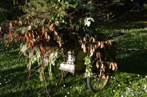 géraniums,glycine Monpazier,cabane,arums,fleurs sauvages 102.JPG