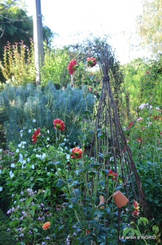 fleurs petit jardin,bouquets,grand jardin 030.JPG