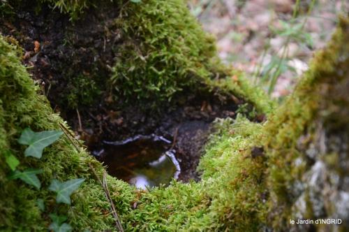 jardin,st Astier,colline 049.jpg