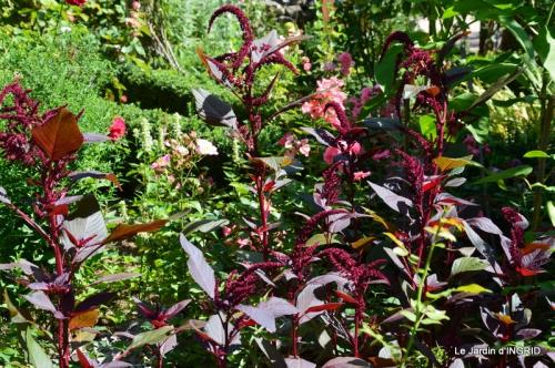 confiture,bouquet,petit jardin 022.JPG