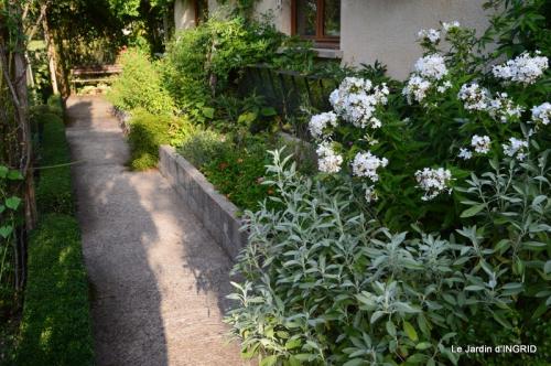 confiture,bouquet,petit jardin 035.JPG