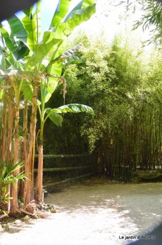 bambous Roque Gageac,jardin,bouquet 136.JPG