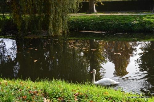 canal automne ,jardin,Ines 131.jpg