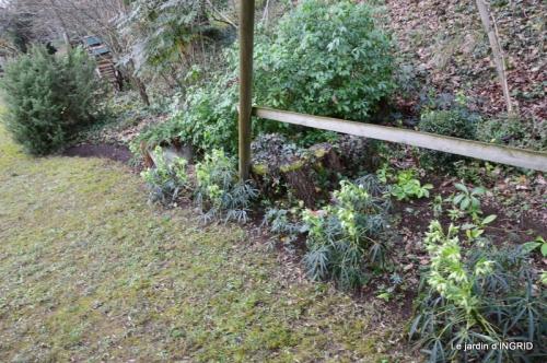 jardin en hiver,à Ciron 012.JPG