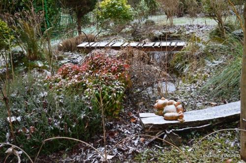 oiseaux première neige 047.JPG
