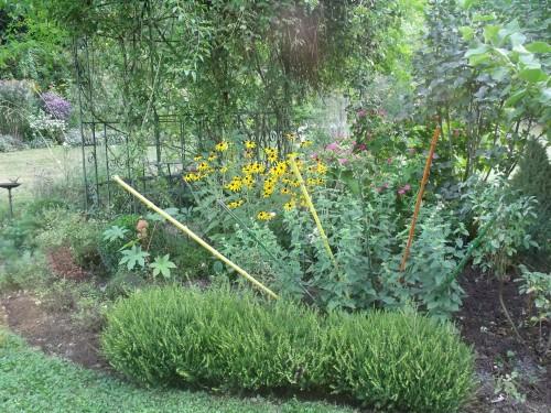 jardin,Arya,voiture,kois,nicky 008.JPG