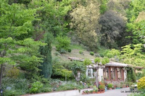 jardin,premières roses,colline,avant l'orage 009.JPG