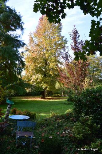 ménage automne,plectanthrus,feuillages 099.JPG