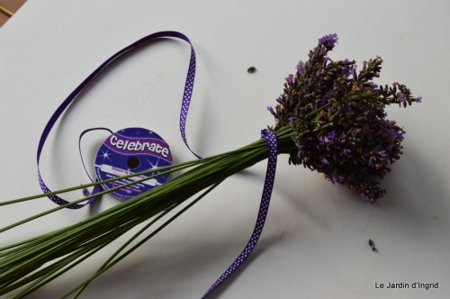 tournesols,pt jardin,nénuphard,libellules,lavande bouquet,carava 102.JPG
