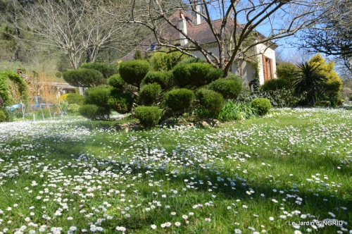 jardin printemps 005.JPG