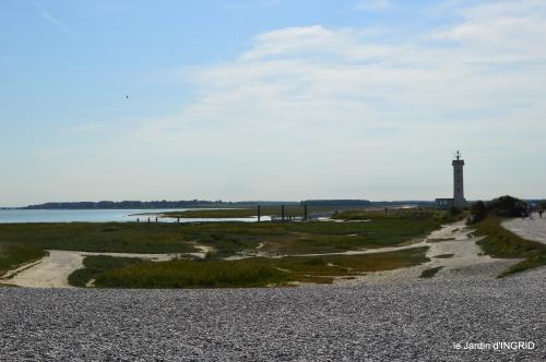 la baie de Somme 051.JPG