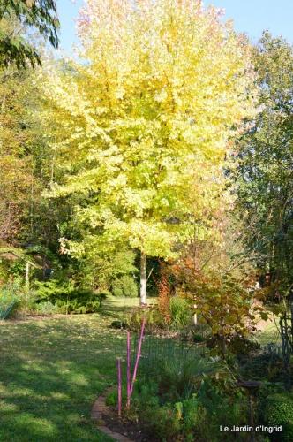 jardin automne,Arya avec Nicky 103.JPG
