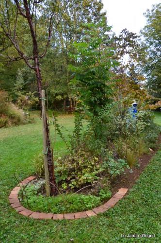 jardin octobre 095.JPG