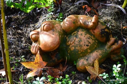 ménage automne,plectanthrus,feuillages 091.JPG