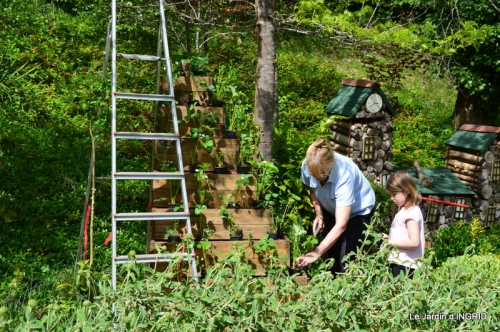 pyramide de fraisiers,toit végétalisé 009.JPG