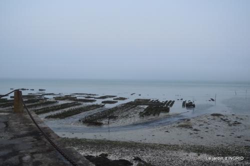 Cancale,plages du D,Joseph,Mesnil Gaillard,Miromesnil 054.JPG