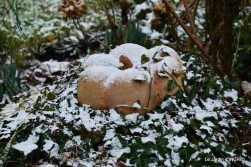 oiseaux première neige 046.JPG