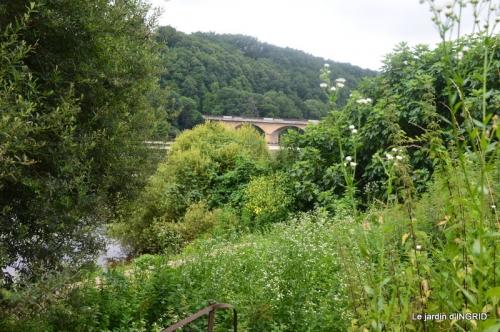 sentier des cygnes,hémérocalles,bouquet,jardin 099.JPG
