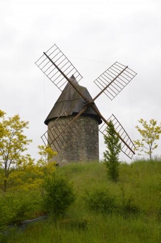 serre,iris,ancolie,iriseraie Papon,moulin 102.JPG